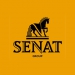 Senat Group